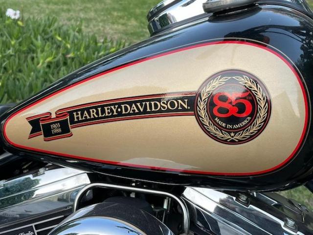 stefanhead harley davidson usate rimini